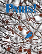 Winter 2010 cover